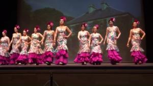 ¿Quieres aprender flamenco?